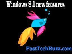 Windows8.1 boot screen logo